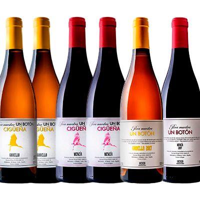 Lote 6 Botellas Encima Wines DO Bierzo